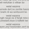 Welat Wazena
